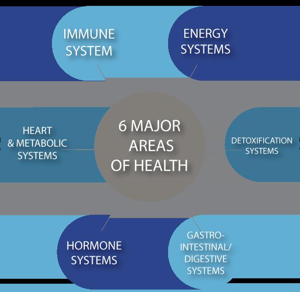 6-AREAS-OF-HEALTH - The Kaplan Center